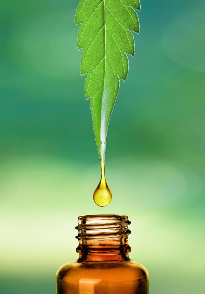 CBD Oil Protein